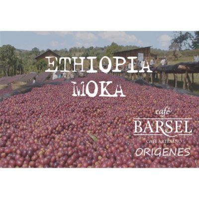 café Ethiopia