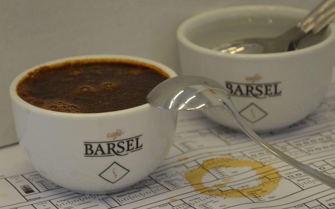 DESARROYO DE HABILIDADES DE CATA DE CAFÉ